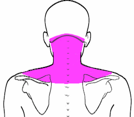 neck  advanced holistic healing arts